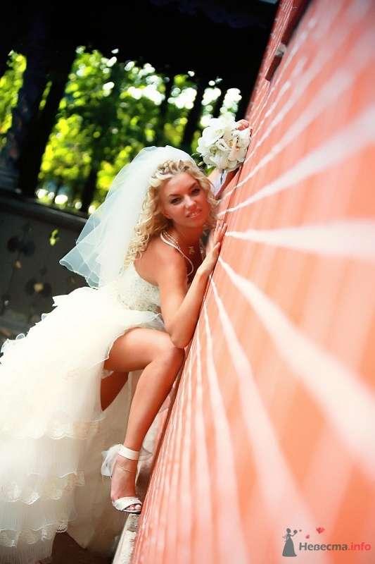 невеста человека-паука - фото 51904 barbie