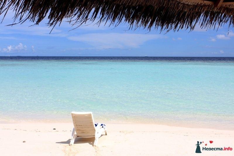 Фото 104857 в коллекции Мальдивы  -  идеальное место для медового месяца. - barbie