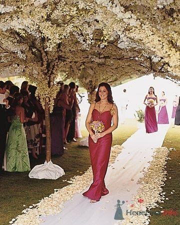 Фото 24037 в коллекции Разное - Невеста01