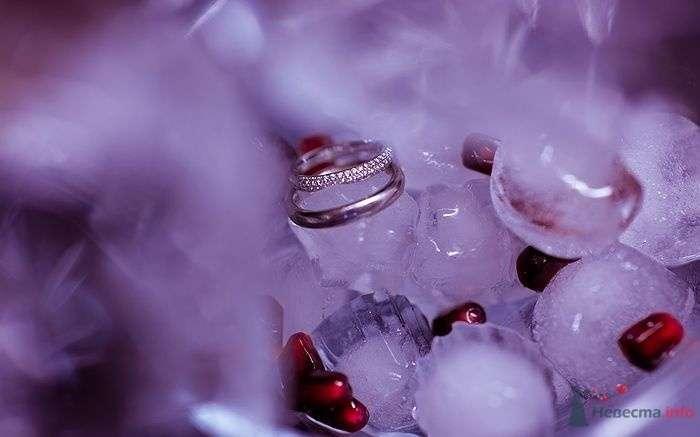 Фото 72848 в коллекции Мои фотоработы (Wedding) - Невеста01