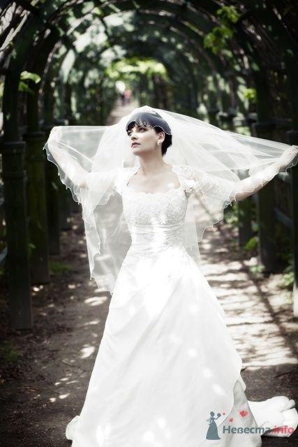 Фото 58941 в коллекции свадьба 22.05.2009 - jasmine