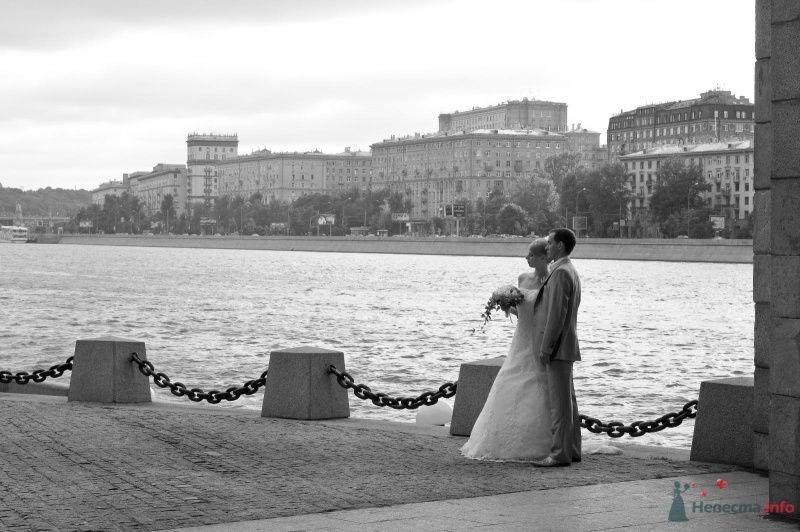 Фото 59259 в коллекции 22.08.2009 - Pinka