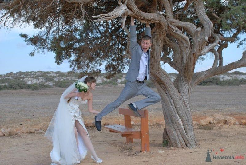 Невеста стаскивает с ветки дерева жениха