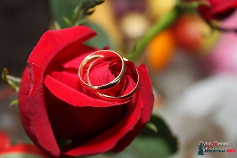 Фото 248087 в коллекции Свадьба - Денис Юдин (свадебный фотограф)