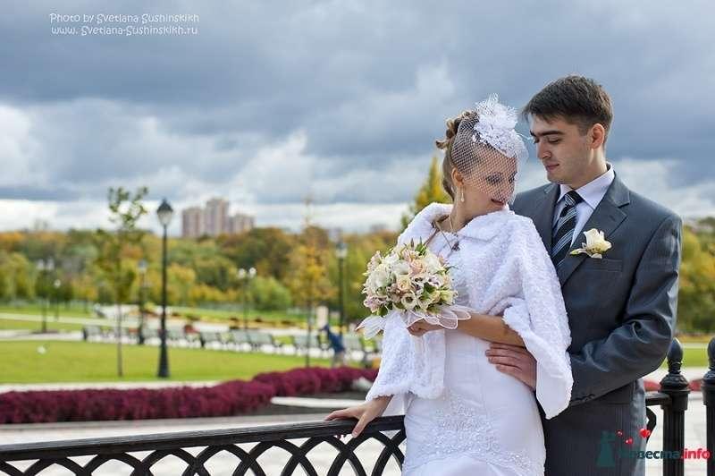 Фото 396320 в коллекции Свадьба от Светланы Сушинских - ЛиОНа - ведущая Лия Батюченко & DJ Надежда