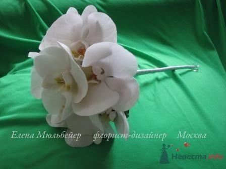 Букет из фаленопсисов - фото 30706 Цветочная мастерская Флорины