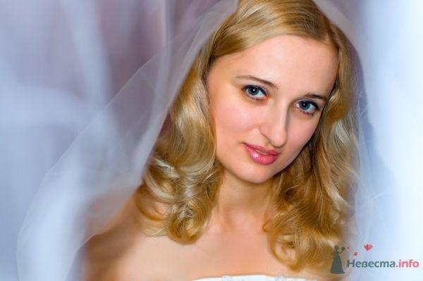 """Фото 44696 в коллекции разное) (для """"пообщаться на форуме"""") - Невеста01"""