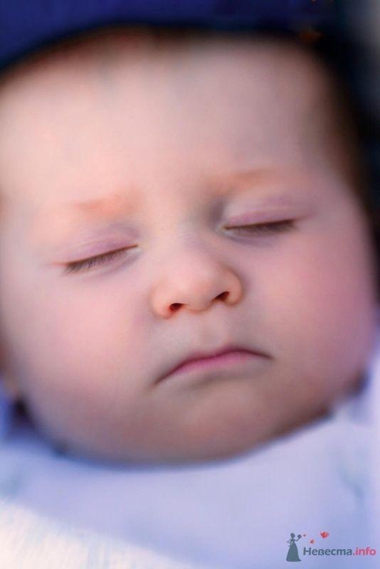 Фото 50071 в коллекции Прогулка с малышом - Невеста01