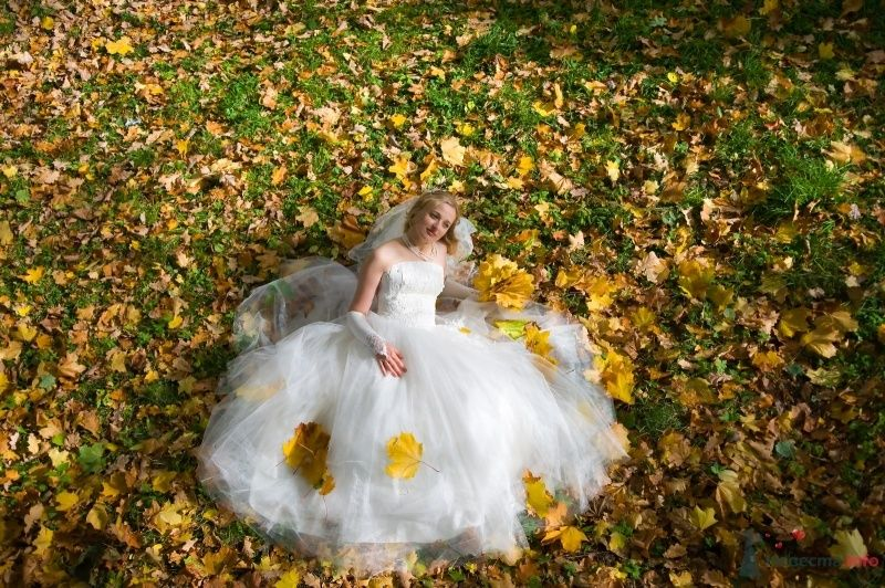 """Фото 65809 в коллекции разное) (для """"пообщаться на форуме"""") - Невеста01"""