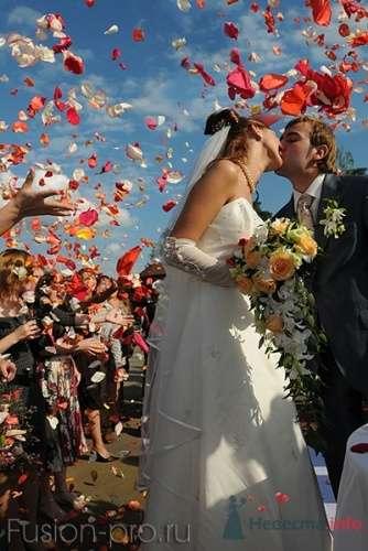 выездная регистрация брака на водохранилище - фото 4433 fusion promotion