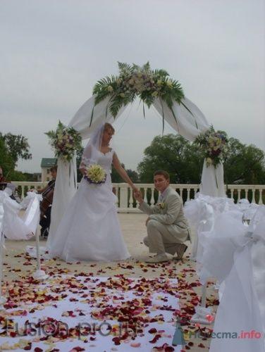 выездная регистрация брака в усадьбе Остафьево - фото 4434 fusion promotion