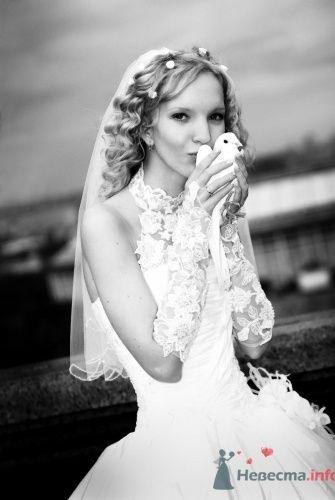 Фото невесты с голубем. - фото 583 Анжелика Саакова - фотограф