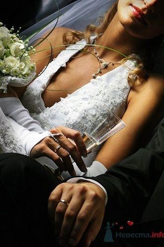 Руки жениха и невесты в свадебных кольцах.