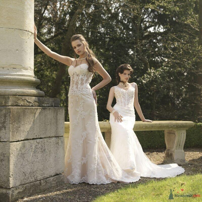 Фото 54238 в коллекции Платье, которые нравяться - Wamira