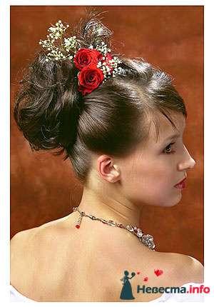 Фото 95501 в коллекции Свадебные прически (фотографии сняты не мной)  - Wamira