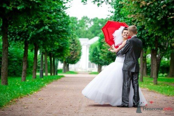 Фото 62813 в коллекции Вы хотели свадьбу, их есть у меня:) - Спиноза
