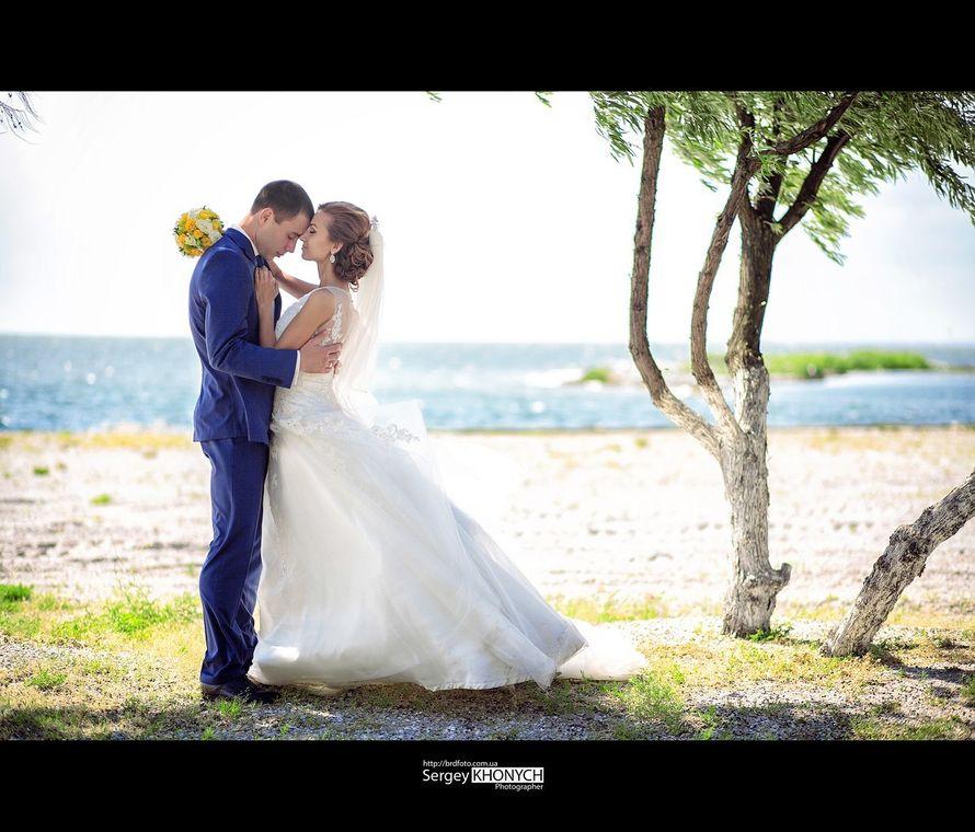 Фото 7724108 в коллекции Свадьбы - Фотограф Сергей Хоныч