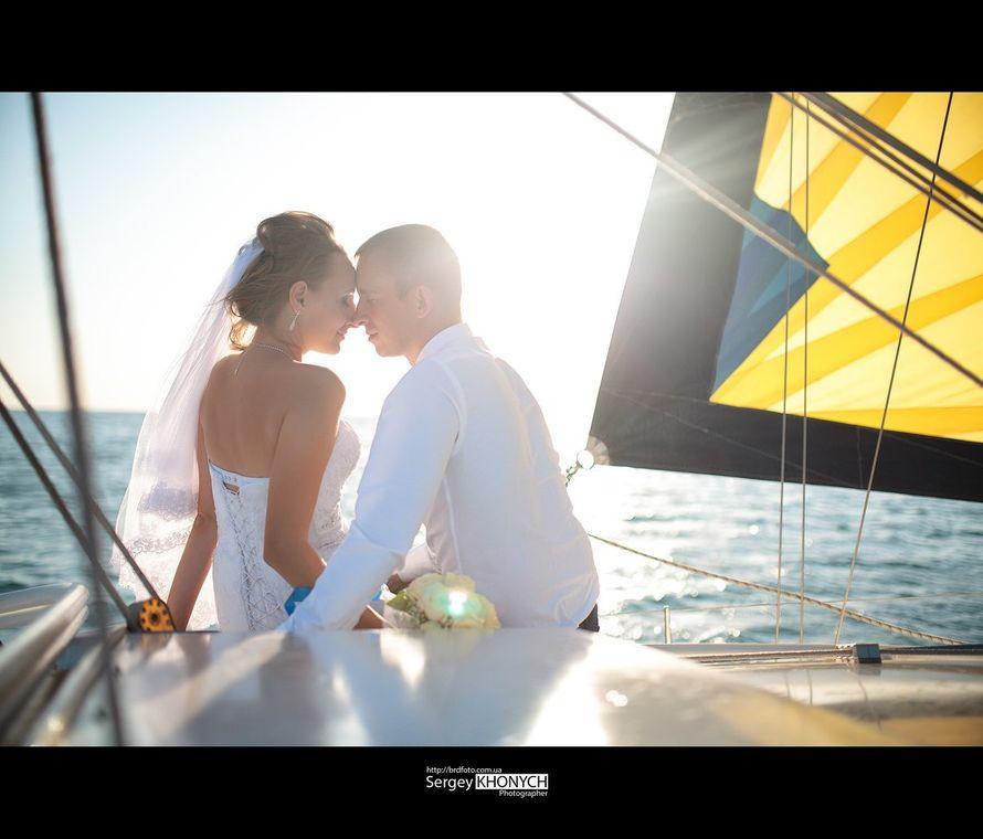 Фото 7724224 в коллекции Свадьбы - Фотограф Сергей Хоныч