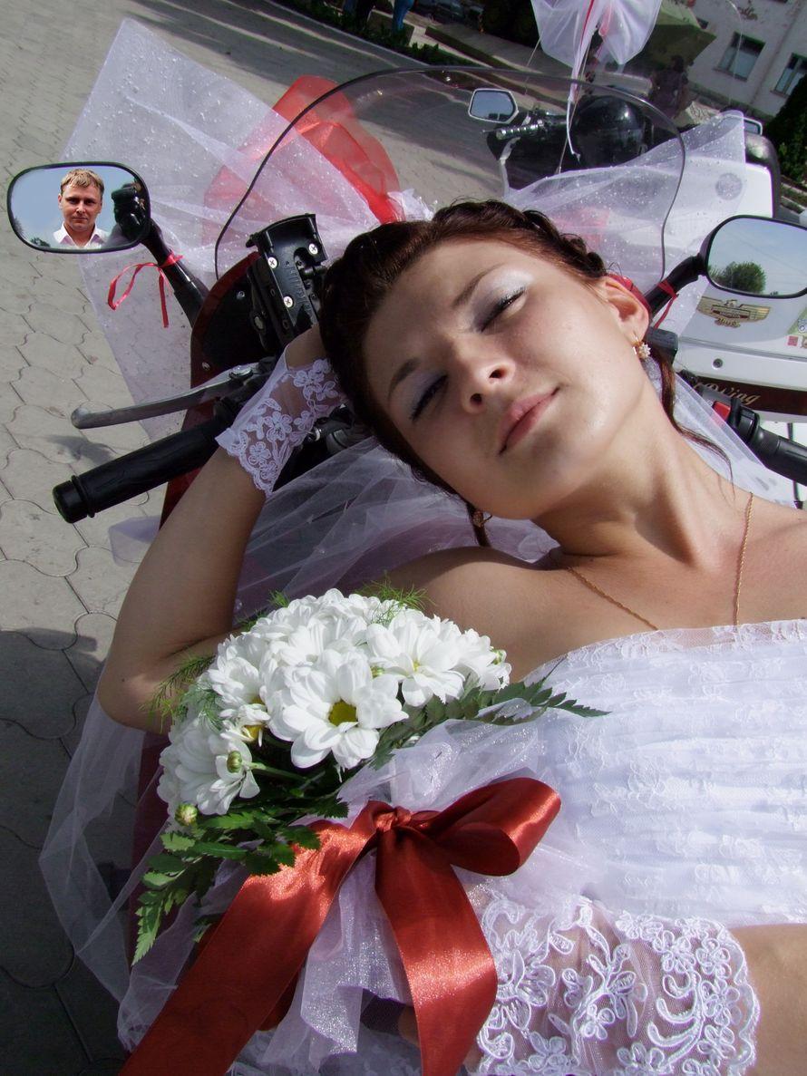 """Фото 517177 в коллекции свадебные фото. Фотограф Наталья - Арт-студия """"Улыбка"""""""