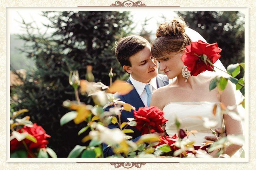 Фото 8905938 в коллекции Игорь и Вероника - Мастерская свадеб - организаторы