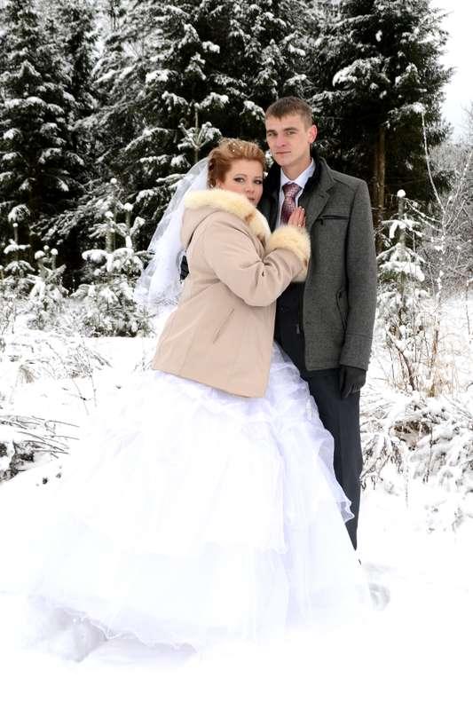Фото 13536498 в коллекции Свадебное фото - Видеограф Андрей Шалданов