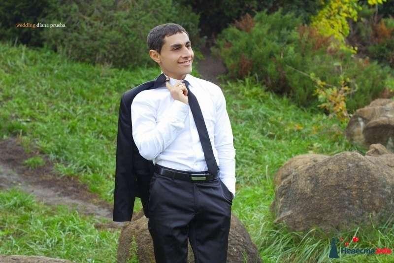 """Классический черный костюм жениха """"двойка"""" с белой рубашкой, черным галстуком и черным ремнем для брюк - фото 270247 Фотограф Пруша Диана"""