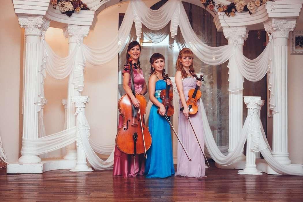 Фото 9385780 в коллекции Фотосессия - Скрипичное соло Ekaterina Grand