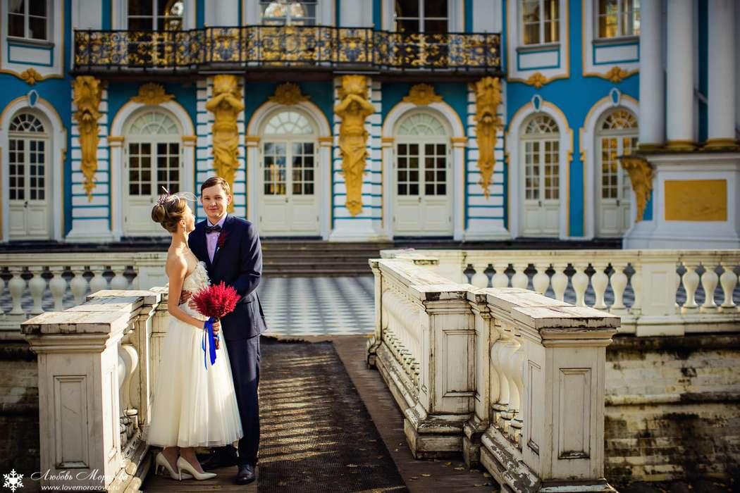 Фото 8558252 - Фотограф Любовь Морозова