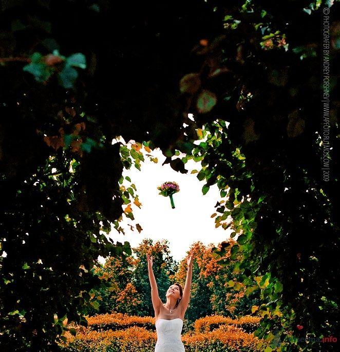 Фото 42300 в коллекции Фотографии со свадеб - Фотограф Андрей Поршнев