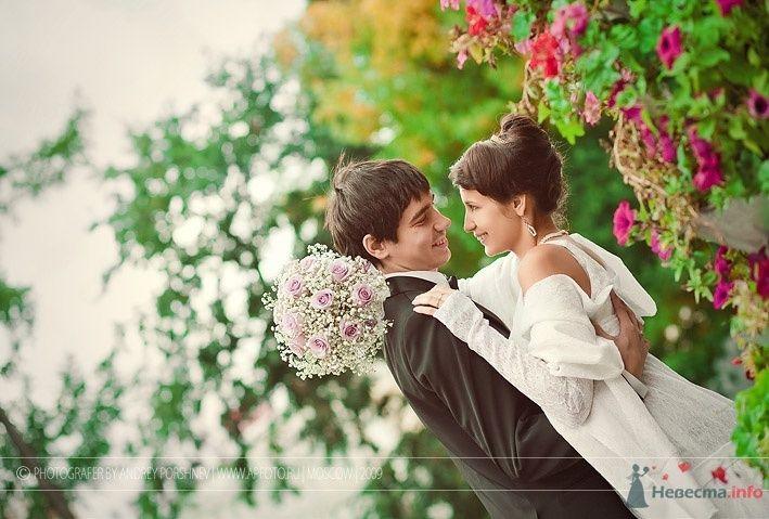 Фото 64523 в коллекции Фотографии со свадеб - Фотограф Андрей Поршнев
