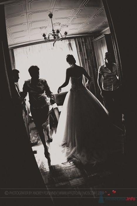 Фото 67739 в коллекции Фотографии со свадеб - Фотограф Андрей Поршнев