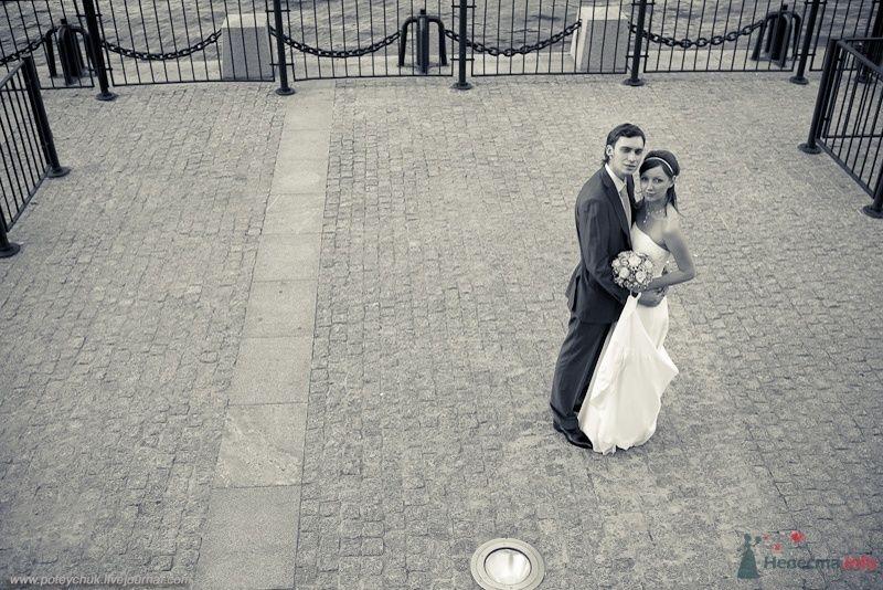 Фото 43287 в коллекции Свадебный переполох