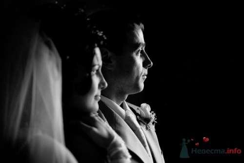 Фото 21990 в коллекции Мои свадебные работы - gfhfljrc
