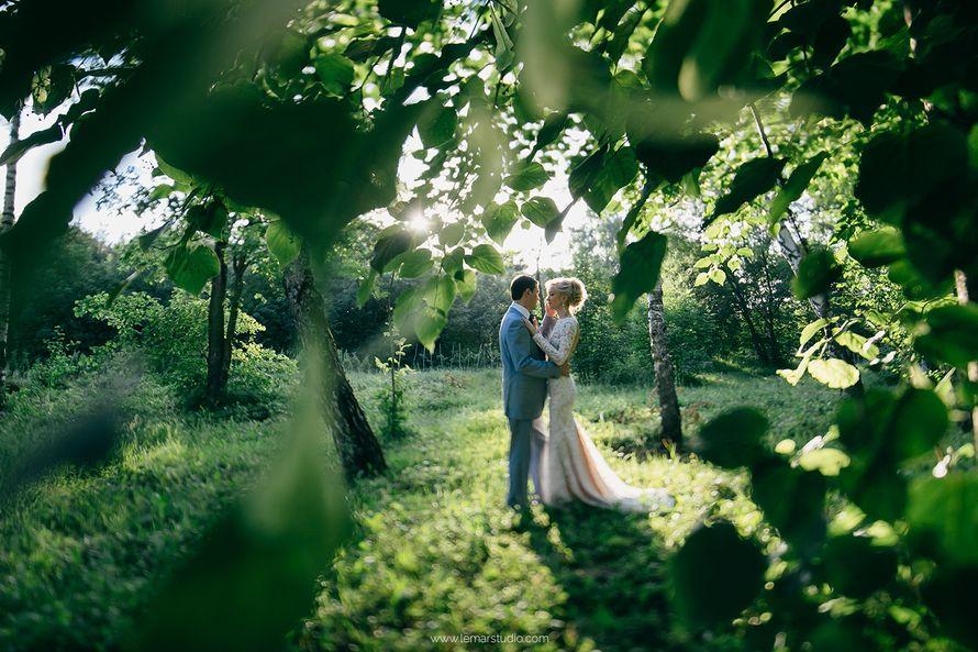 Фото 6082427 в коллекции Свадьбы - Фотограф Александр Лемар