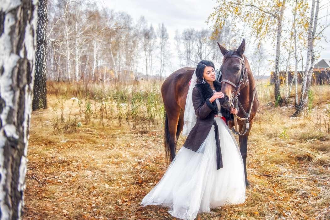 Фото 10043898 в коллекции Портфолио - Фотограф Беличев Денис