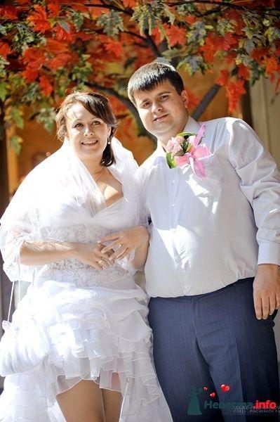 Фото 327232 в коллекции Свадьба - Михаил Пинченков - Профессиональный фотограф