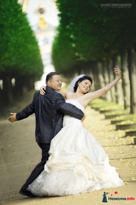 Фото 327244 в коллекции Свадьба - Михаил Пинченков - Профессиональный фотограф