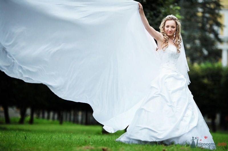 Фото 62826 в коллекции Наша самая счастливая свадьба )) - Anastasiya