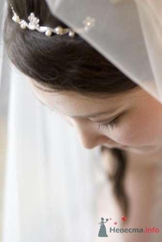 Фото 23028 в коллекции Свадьбы  - Zoto