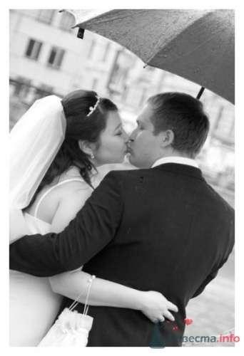 Фото 23032 в коллекции Свадьбы  - Zoto