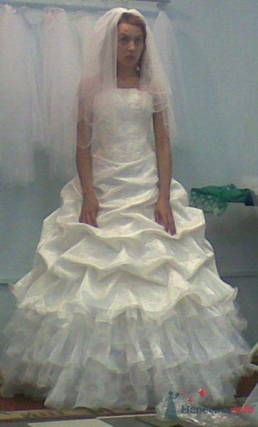 я в платье - фото 30036 Krolia