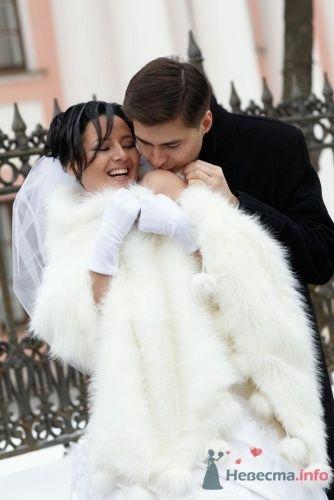 Фото 23317 в коллекции наша свадьба