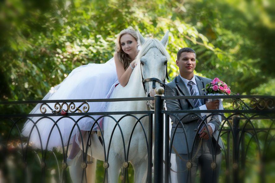 Фото 3759957 в коллекции Свадьба 2014 - Фотограф и видеограф Наталья Тёмная