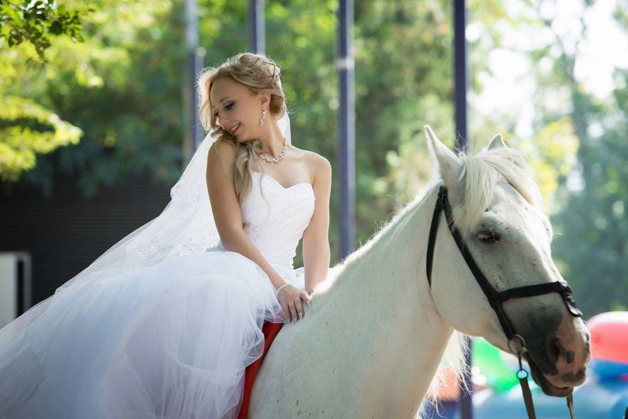 Фото 3759961 в коллекции Свадьба 2014 - Фотограф и видеограф Наталья Тёмная
