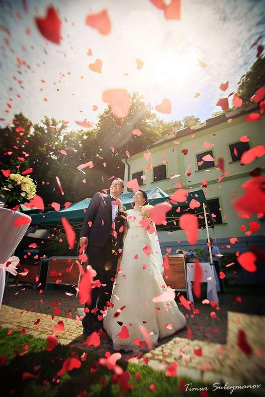 Фото 677501 в коллекции Свадьба для двоих в Праге  - Агентство Royal Wedding - свадьба в Праге и Чехии