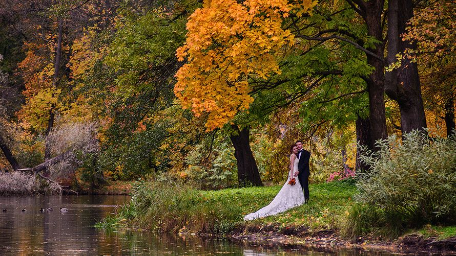 Фото 1349595 в коллекции Свадебное фото - Егоров Андрей фотограф