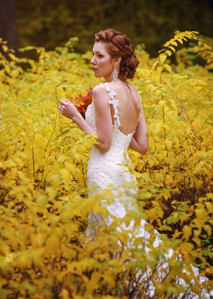 Фото 1356223 в коллекции Свадебное фото - Егоров Андрей фотограф
