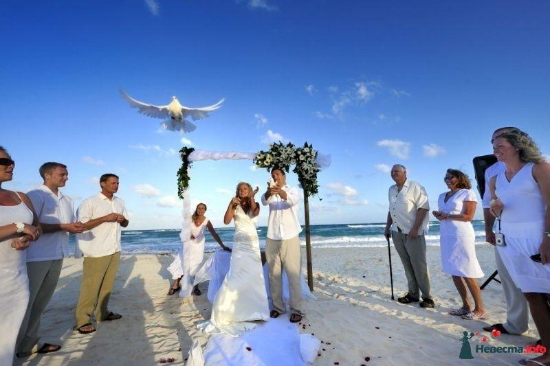 Свадьбы на карибском пляже, Мексика!  - фото 323348 Гелена Дёмель - свадебный координатор в Мексике