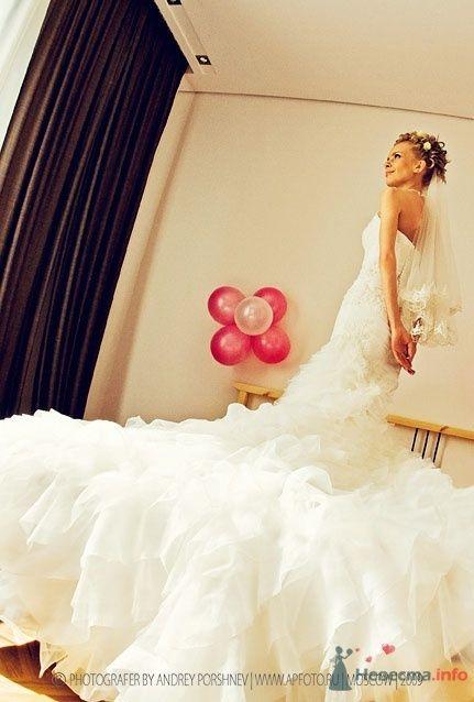 Фото 24293 в коллекции Свадебные фотографии - Невеста01