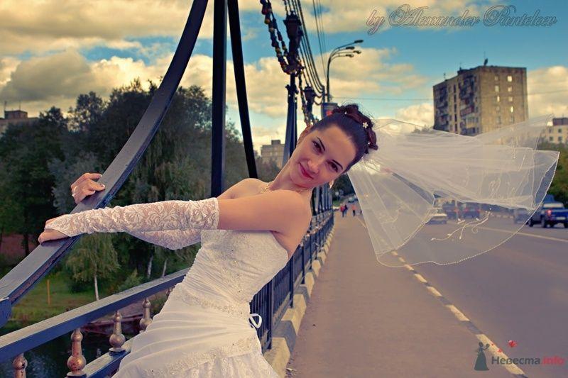 no name - фото 42462 Свадебный фотограф Пантелеев Александр
